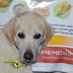 Alimentation pour chiens : Hill's Nature's Best adult petit/moyen, au poulet (Hill's Pet)