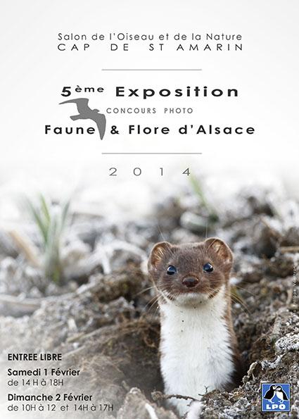 Salon de l'Oiseau et de la Nature, 5 ème exposition de photos «Faune et flore d'Alsace» à Cap de Saint Amarin (68), du samedi 01 er au dimanche 02 février 2014