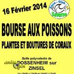 Bourse aux poissons, plantes et boutures de coraux à Dossenheim-sur-Zinsel (67), le dimanche 16 février 2014