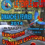 Exposition d'Oiseaux Exotiques à Temple sur Lot (47), le dimanche 09 février 2014