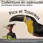 """Exposition """"Pics et Toucans, les animaux sortent de leur réserve"""" à La Chaux de Fonds (Suisse), du samedi 30 novembre 2013 au dimanche 23 février 2014"""