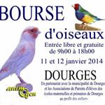 Bourse d'Oiseaux à Dourges (62), du samedi 11 au dimanche 12 janvier 2014