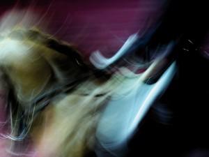 cheval passion avignon affiche