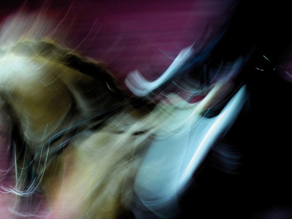 Cheval passion en avignon 84 du mercredi 15 au for Salon du cheval d avignon