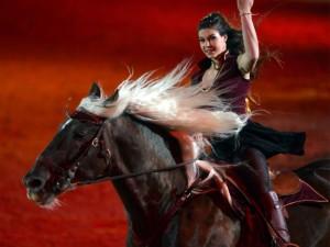 cheval passion avignon gala
