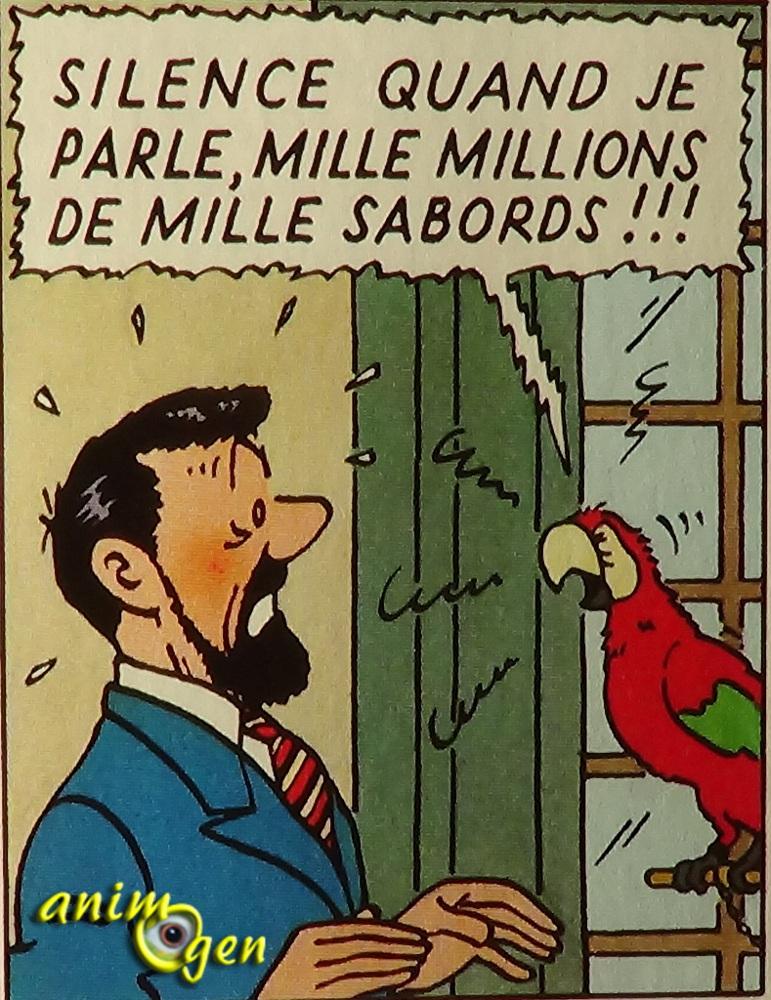 Le perroquet dans Tintin