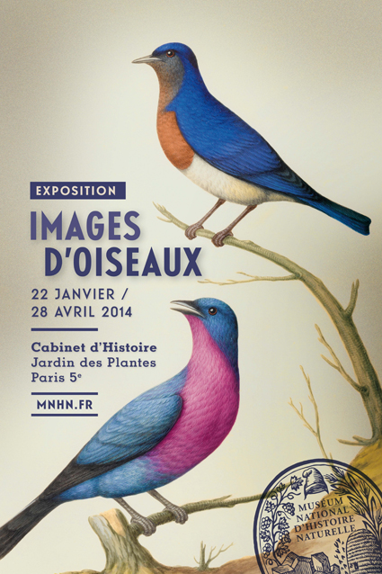 """Exposition """"Images d'Oiseaux"""" à Paris (75), du mercredi 22 janvier au lundi 28 avril 2014"""