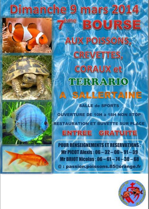 7 me bourse aux poissons crevettes coraux et terrario for Vente aquariophilie