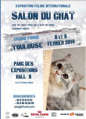 Salon du chat à Toulouse (31), du samedi 08 au dimanche 09 février 2014