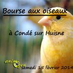 Bourse aux oiseaux à Condé sur Huisne (61), le samedi 15 février 2014