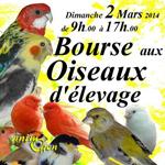 Bourse aux oiseaux à Chelles (77), le dimanche 02 mars 2014