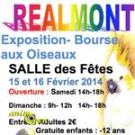 Bourse aux oiseaux à Realmont (81), du samedi 15 au dimanche 16 février 2014