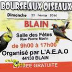 Bourse aux oiseaux à Blain (44), le dimanche 23 février 2014