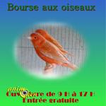 Bourse aux oiseaux au Breuil sur Couze (63), le dimanche 16 février 2014