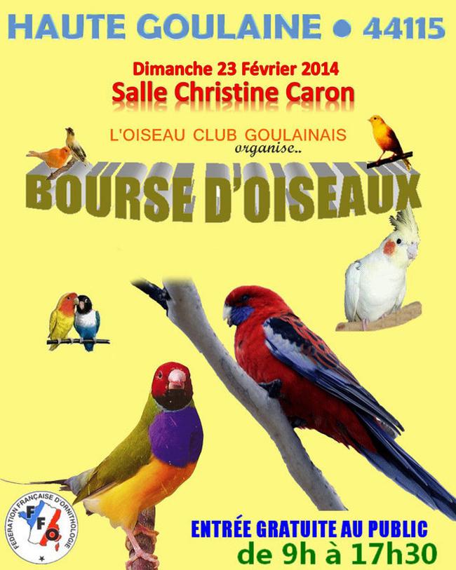 Bourse aux oiseaux haute goulaine 44 le dimanche 23 for 44115 haute goulaine