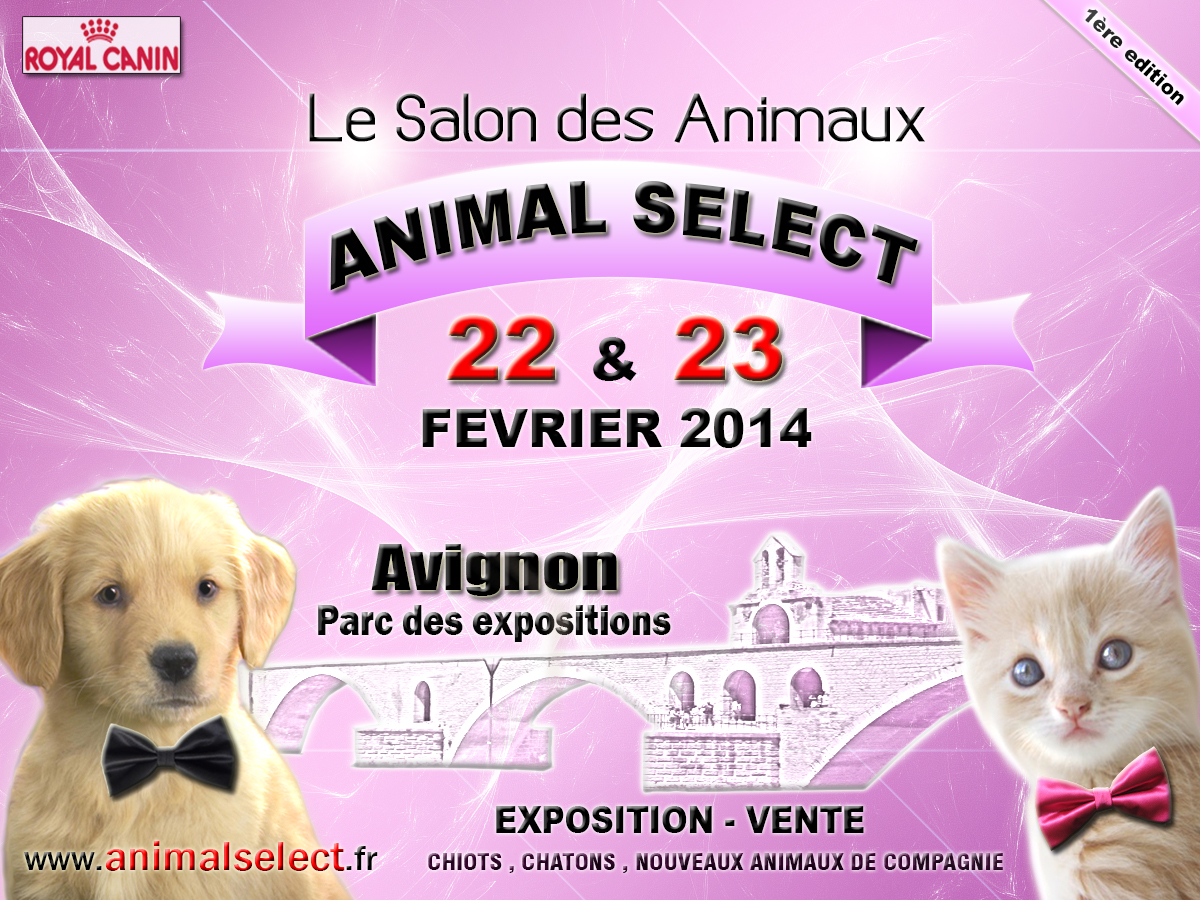 salon des animaux animal select en avignon 84 du samedi 22 au dimanche 23 f vrier 2014. Black Bedroom Furniture Sets. Home Design Ideas