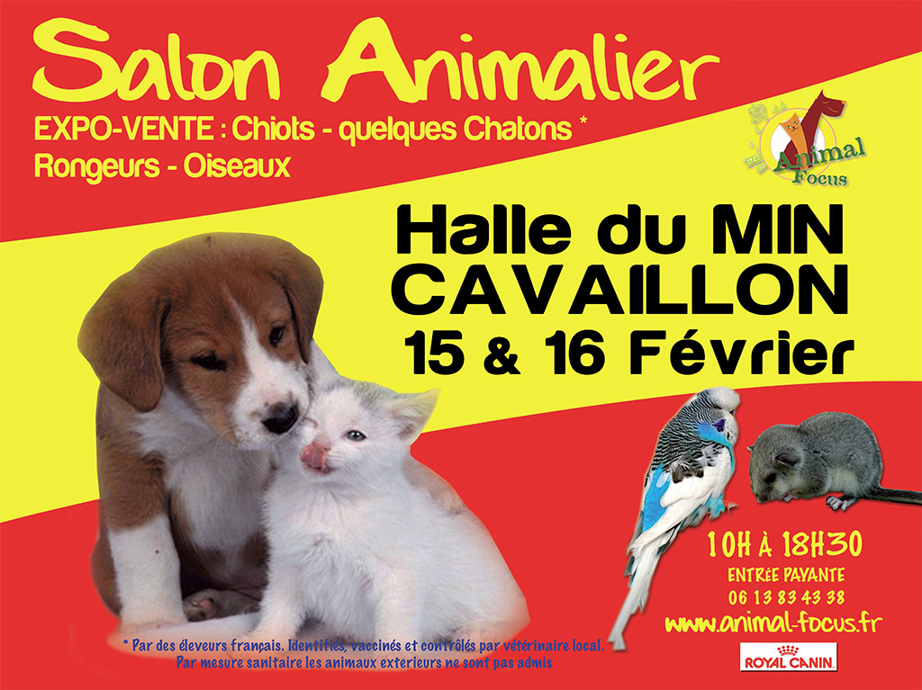 33 ème Salon animalier « Animal Focus » à Cavaillon (84), du samedi 15 au dimanche 16 février 2014