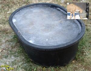 Sant comment fournir de l eau potable nos chevaux en hiver animogen - Comment vider un chauffe eau electrique ...