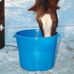Santé : comment fournir de l'eau potable à nos chevaux en hiver ?