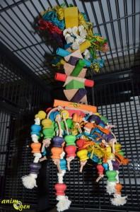 Jouet pour grand perroquet : Dumb de Bell (Original PlayFun)