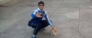Marseille : un lancer condamné par la justice pour l'agresseur du chaton Oscar