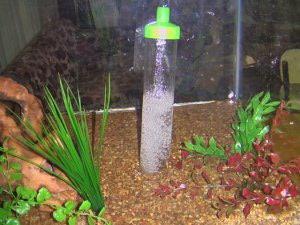 A quel rythme et dans quelles proportions faut-il renouveler l'eau d'un aquarium d'eau douce ?