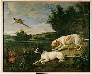 L'expression de la beauté animale par les artistes et naturalistes au fil des siècles