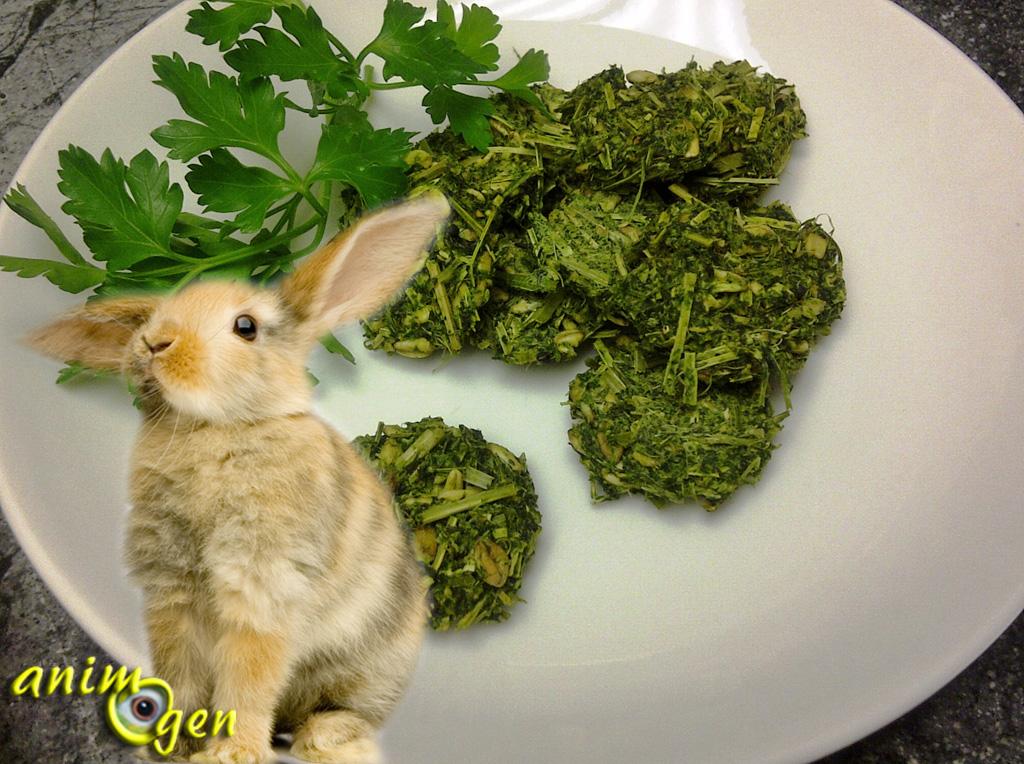 Alimentation : biscuits aux pommes et au persil faits maison pour nos lapins et rongeurs