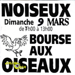 Bourse aux oiseaux à Noiseux (Belgique), le dimanche 09 mars 2014