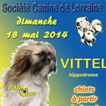 Exposition canine nationale dans la ville de Vittel (88), le dimanche 18 mai 2014