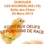 Foire aux œufs et poussins de race à Ourouer les Bourdelins (18), le dimanche 30 mars 2014