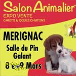 35 ème Salon animalier « Animal Focus » à Mérignac (33), du samedi 08 au dimanche 09 mars 2014