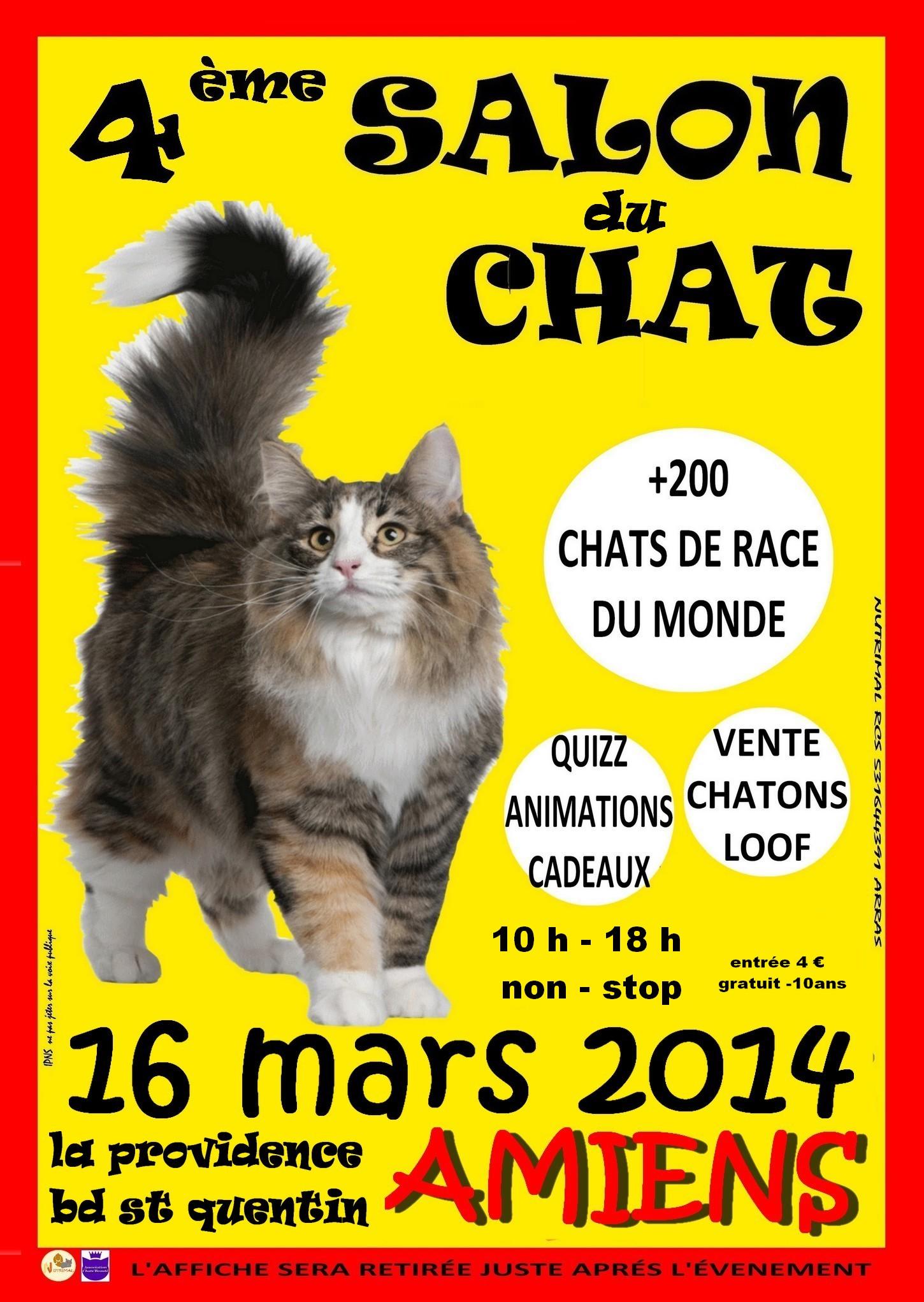 4 me salon du chat amiens 80 le dimanche 16 mars for Salon chat sexe