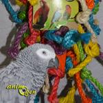 Jouet pour moyen et grand perroquet : tour de nœuds (Tyrol)