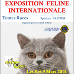 Exposition internationale féline à Saint Quentin (02), du samedi 08 au 09 mars 2014