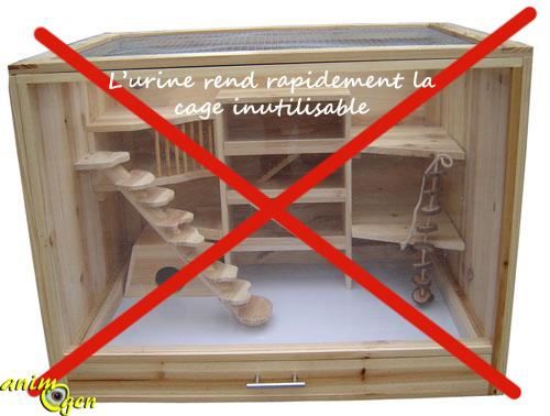 accessoire comment choisir la cage d une souris animogen. Black Bedroom Furniture Sets. Home Design Ideas