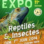 Exposition Reptiles et Insectes à Croix (59), le dimanche 01 er juin 2014