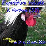 Exposition avicole à Verdun (55), du samedi 19 au lundi 21 avril 2014