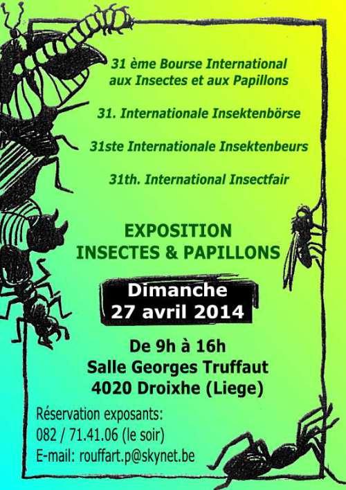 31 ème Exposition-Bourse internationale de papillons et insectes à Droixhe (Belgique), le dimanche 27 avril 2014