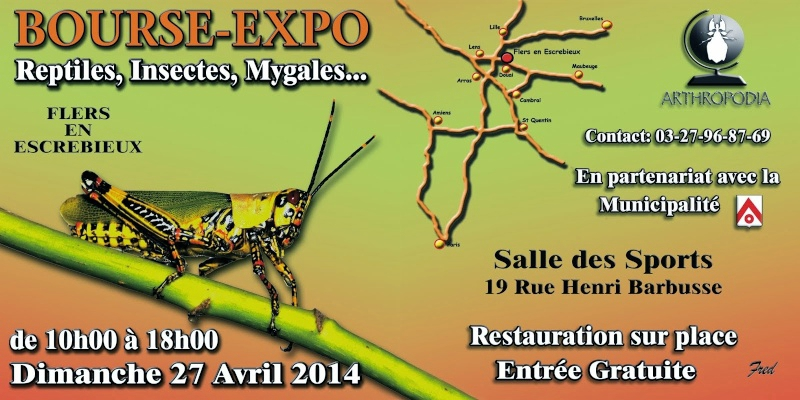 Bourse-exposition d'insectes et reptiles à Flers en Escrebieux (59), le dimanche 27 avril 2014
