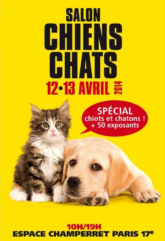 3 me salon chiens chats paris 75 du samedi 12 au for Salon du chien 2017 paris