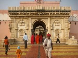 Le temple de Karni Mata, sanctuaire des rats