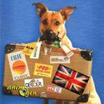 Comment visiter le Royaume-Uni avec son chien ?