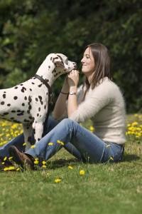Comportement : pourquoi donnons-nous de l'affection à notre chien ?