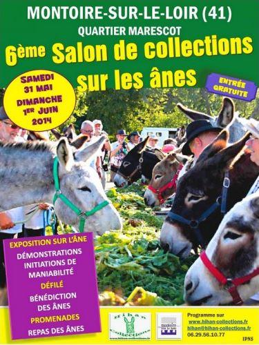 6 ème Salon de collections sur les ânes à Montoire sur le Loir (41), du samedi 31 mai au dimanche 01 er juin 2014
