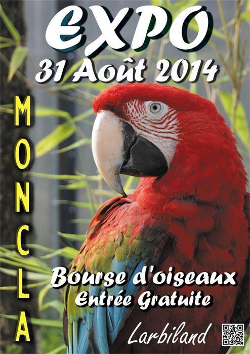 Bourse aux oiseaux à Moncla (64), le dimanche 31 août 2014