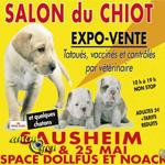 Salon du Chiot à Sausheim (68), du samedi 24 au dimanche 25 mai 2014