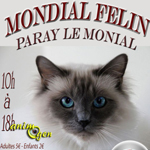 """Exposition féline """"Mondial Félin"""" à Paray le Monial (71), du samedi 31 mai audimanche 1erjuin 2014"""