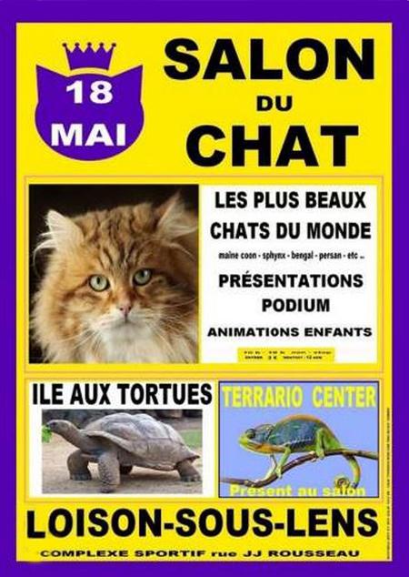 Salon du chat à Loison sous Lens (62), le dimanche 18 mai 2014