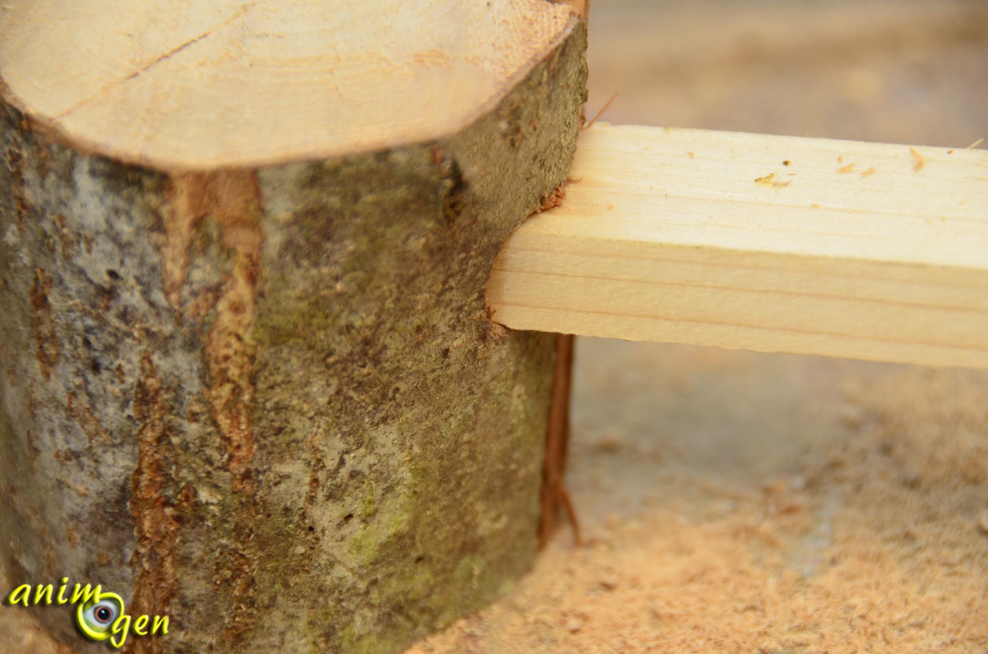 Accessoire fabriquer pour nos rongeurs passerelle sur - Fabriquer un chevalet pour couper le bois ...
